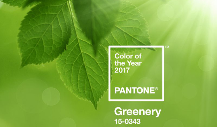 Pantone greenery colour 20147 colore