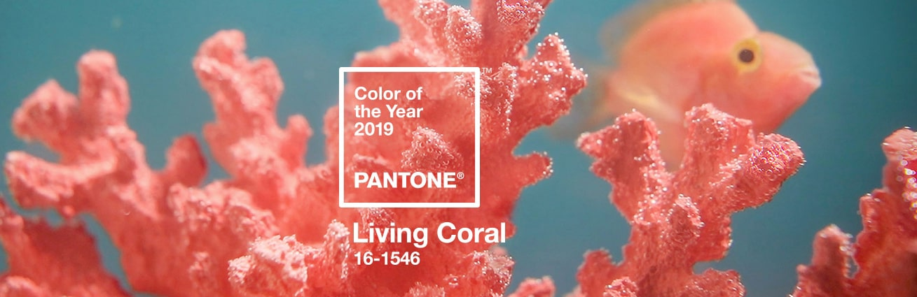 pantone color of the year 2019 living coral min