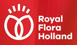 royal floraholland logo min