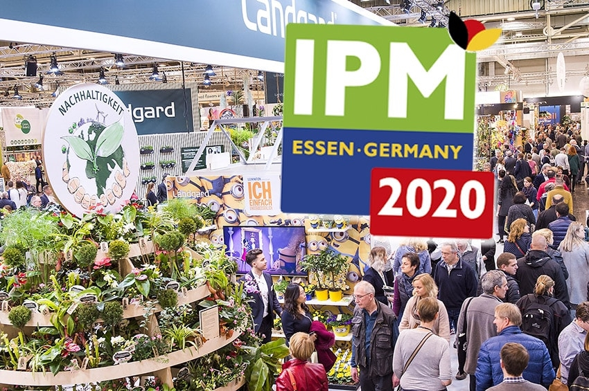 IPM ESSEN 2020 photo gallery