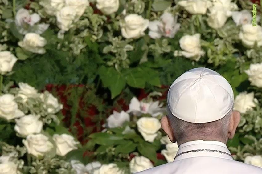 Domenica 25 Luglio: cascate di fiori per la Giornata mondiale dei nonni e degli anziani