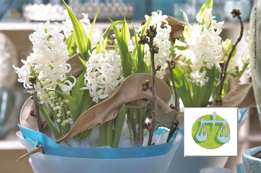 BILANCIA (23 Settembre - 22 Ottobre) - Lo zodiaco dei fiori da bulbo